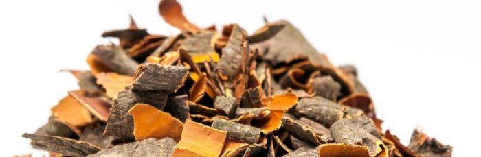 Лечение простатита корой осины: свойства рецепты